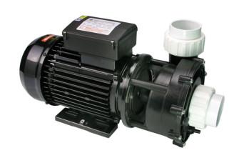 WP250-II Pump 2.5 HP, Dual Speed 150820-30
