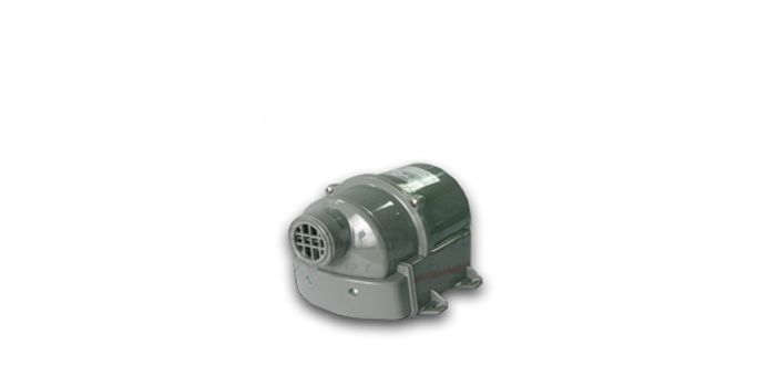 Spa Blowers